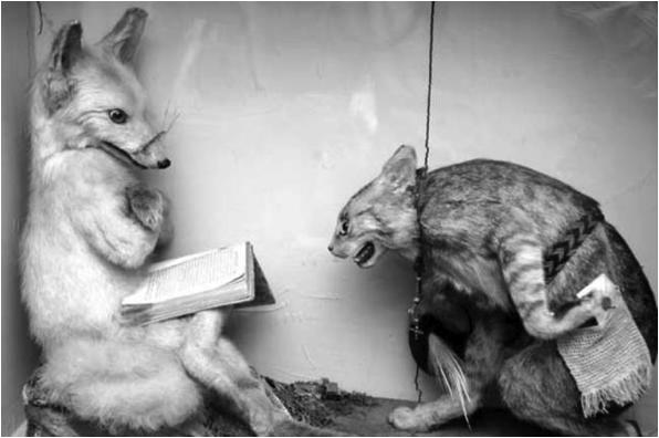 reading-fox