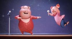 sing-pigs