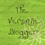 vblogger