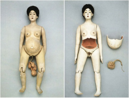 doll with fetus